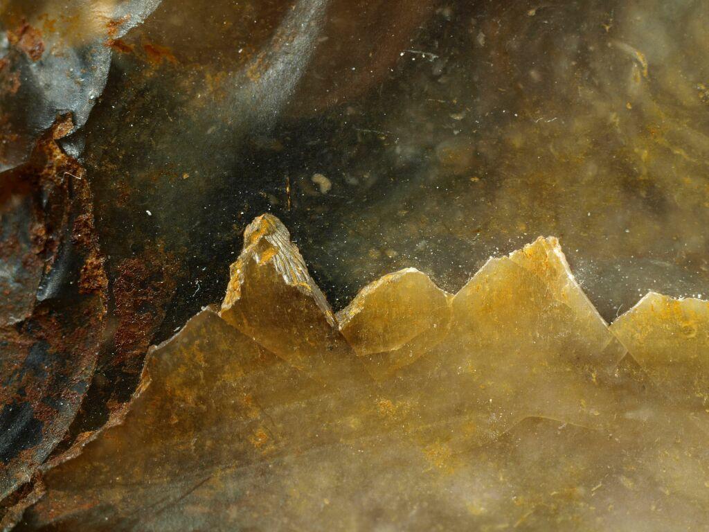 Feuerstein, Makrofotographie von Hartmut Warm, Bild 8